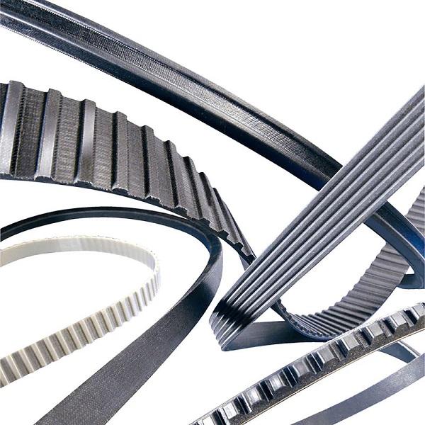 Tìm hiểu về SKF belt, dây curoa SKF chính hãng